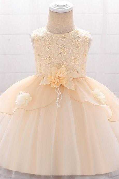 Embroidery Flower Girl Dress Newborn Tutu Floral Baptism Birthday Party Gown Kids Children Clothes champagne